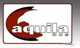 AquilaBus logo design