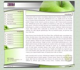 AMS Creative webdesign